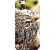 Wild nature - pussy #3 iPhone Case/Skin