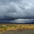 Approaching storm in the desert by Claudio Del Luongo
