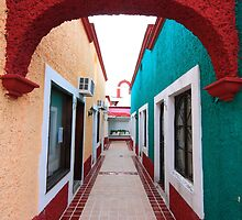 Mexican colours IV by zumi