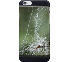 Spiderweb iPhone Case/Skin