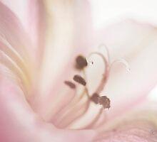 Nectar by KBritt
