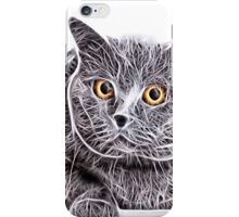 Wild nature - pussy #8 iPhone Case/Skin
