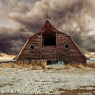Abandoned Barn by Mindy McGregor