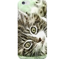 Wild nature - pussy #11 iPhone Case/Skin