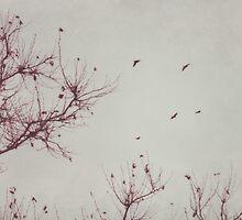 bareness of winter by beverlylefevre