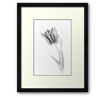 In light of beauty Framed Print