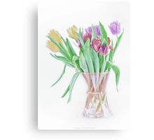 Tulips from ASDA Canvas Print