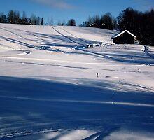 Snowy Hillside by Lina Ottosson