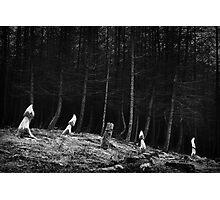 Blaen Bran (Coed Gwain Y Fferiad) - 013 B&W Photographic Print