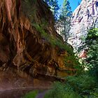 Call of The Canyon by BGSPhoto