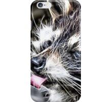 Wild nature - raccoon iPhone Case/Skin