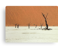 We are the scatterings of Africa  Canvas Print