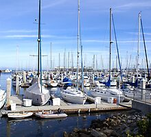 Monterey Harbor by BarbaraSnyder