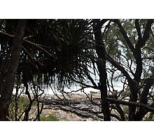 View The Ocean Photographic Print