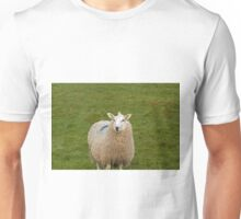 Sheep in Wales Unisex T-Shirt