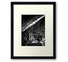 Survival... Framed Print