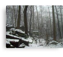Veil of Winter Canvas Print