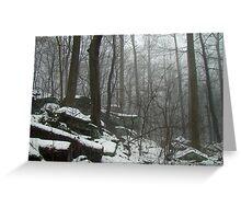 Veil of Winter Greeting Card