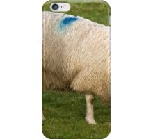 Sheep in Wales iPhone Case/Skin