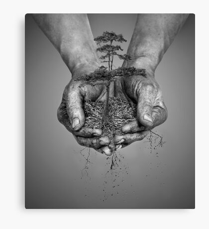 Earth In His Hands Canvas Print