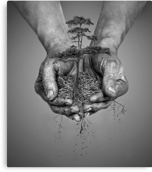 Earth In His Hands by Patricia Jacobs DPAGB LRPS BPE4
