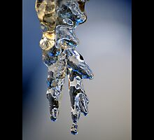 Melting Icicle by © Sophie W. Smith