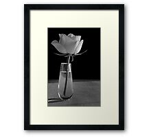 Yellow Rose in vase B&W Framed Print