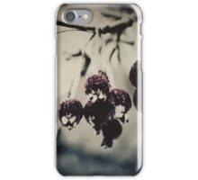 Old Permafrost iPhone Case/Skin