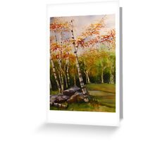 Highpoint Birches Greeting Card