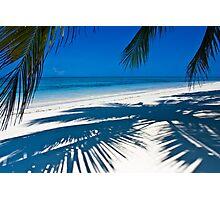 Island View Photographic Print