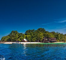 Island of Paradise by ZeamonkeyImages