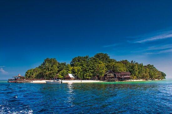 Island of Paradise by ZeamonkeyImages