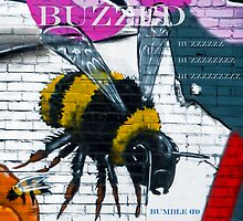 Buzzing Bubble Bee by Michael Andersen