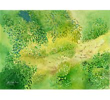 Summertime , Art Watercolor Painting print by Suisai Genki  Photographic Print