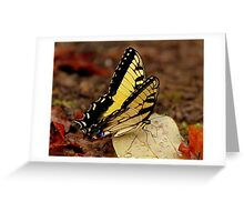 Thirst Quencher Greeting Card