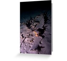 The Last Resting Place Greeting Card