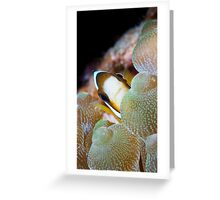 A Reef called Home Greeting Card