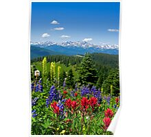 Wildflowers with Distant Snowy Mountains  Poster