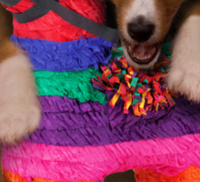 Mexican Dog Sticker
