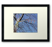 earth & being 8 Framed Print