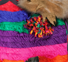 Mexican Squirrel Sticker