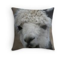 Boring............. Throw Pillow