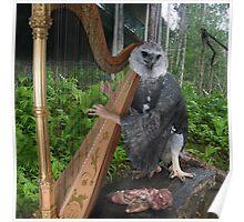 Harpy Eagle Harper Poster