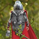 Grey parrot Thor by Felfriast