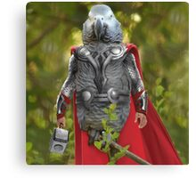 Grey parrot Thor Canvas Print