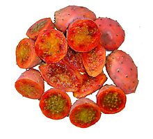 Tropical Red Prickly Pear Fruit  Photographic Print