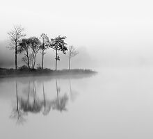 Loch Ard trees in the mist by Photo Scotland