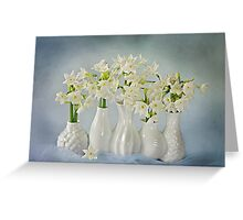 Narcissus 'Paperwhites' Greeting Card