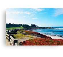 17 Mile Drive Shoreline Canvas Print
