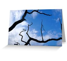 Sky Silhouette Greeting Card